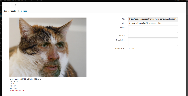 https://mikeyarce.files.wordpress.com/2014/07/screen-shot-2014-07-09-at-7-54-33-am.png